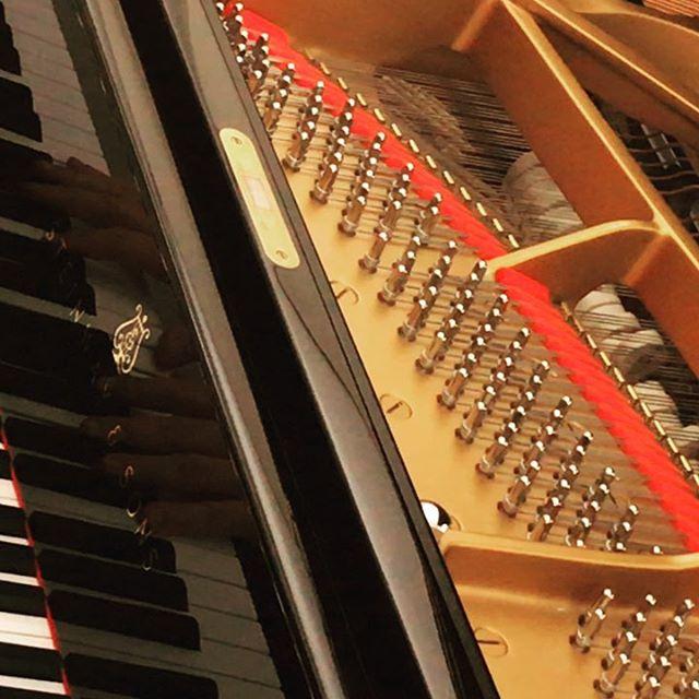 2. Aufnahmetag Ende - Album im Kasten! #michealtheedespieltudojürgens #inalllendingenlebteinlied #michaeltheede #udojürgens #steinwayd #klangmanufaktur #grandpiano #pianosolo #compactdisc #audiophiles #heinekomm
